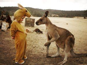 kangaroo-onsie